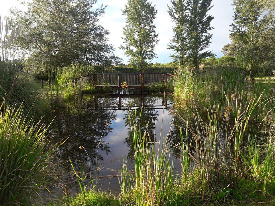 Laguna Jardín Botánico Provincial